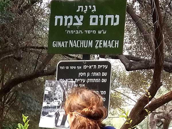 סיור בתל אביב בעקבות תיאטרון הבימה