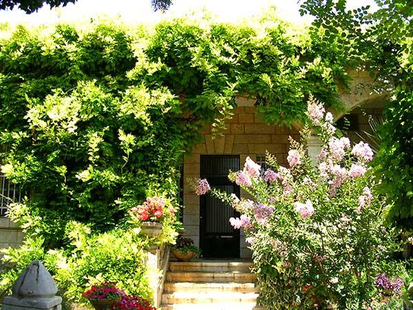 סיור בשכונת טלביה בירושלים